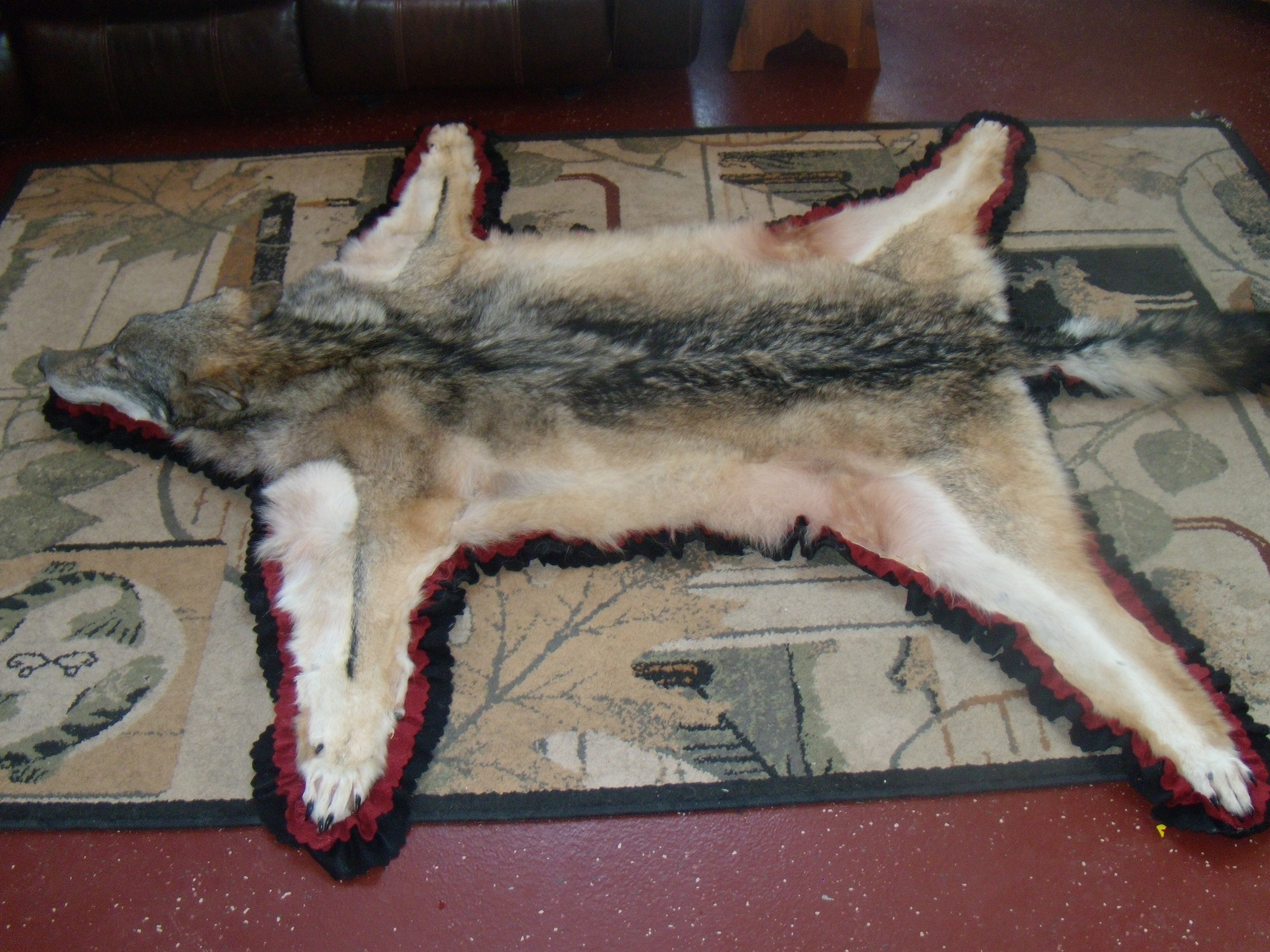 Attractive With More Wolves Coming In Each Year The Rug Is Becoming More And More  Popular.